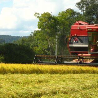 O desenvolvimento do agrotech é a expansão do agronegócio