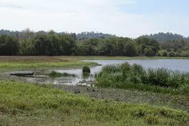 Aluvião envolve o deslocamento de terras que ocorre naturalmente