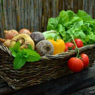 Alimentos in natura e a intensa busca por uma alimentação mais saudável
