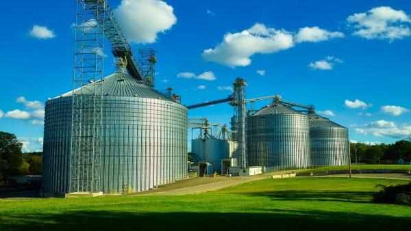 Armazenagem eficiente garante produtividade e qualidade dos produtos