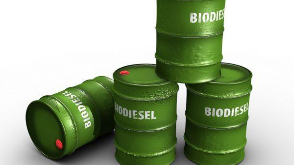 Biodiesel é combustível renovável que influencia a economia brasileira