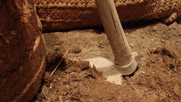Capinar é técnica agrícola usada para evitar danos ao solo