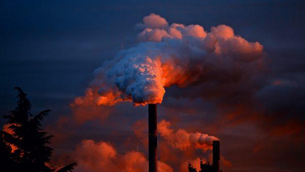 A degradação ambiental afeta diretamente a saúde de todo o planeta