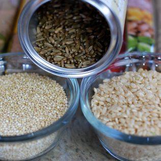 A importância dos grãos para a alimentação e agricultura industrial