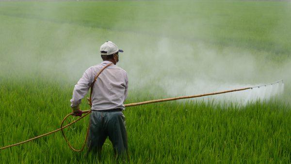 O herbicida e as vantagens que oferece para o agricultor