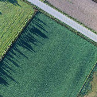 Terras devolutas: o conceito e o papel na questão fundiária
