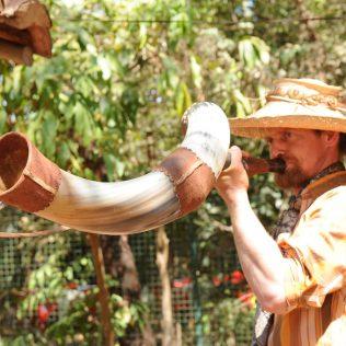A toada contemporânea e o seu papel como patrimônio cultural no Brasil