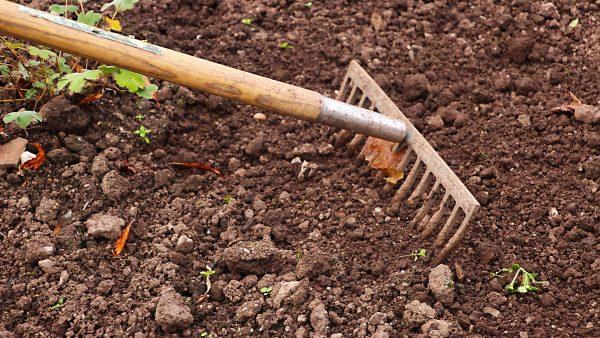 Gadanho é uma ferramenta manual utilizada dentro da agricultura