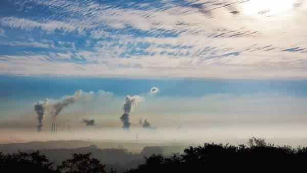 Ciclo do carbono é responsável por possibilitar vida no planeta Terra
