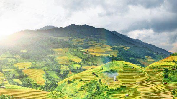 Latifundiários brasileiros comandam mais de 300 milhões de hectares