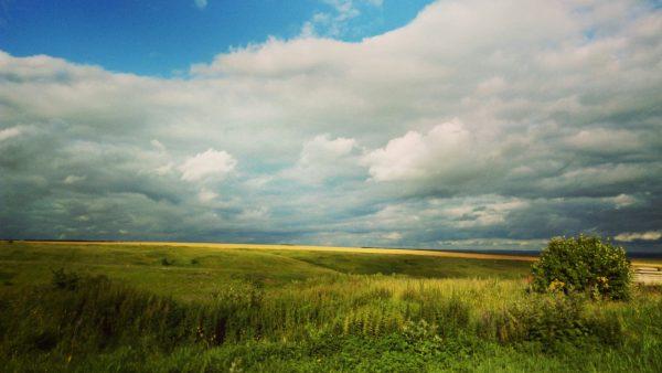 Pradarias são áreas propícias para agricultura e pecuária