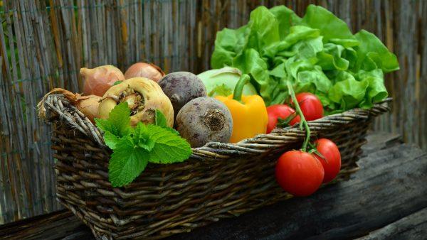 Hortaliças são vegetais essenciais para o organismo humano