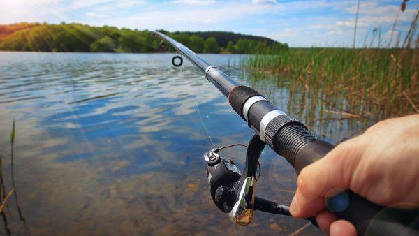 Carteira de pesca é condição legal para exercício profissional e amador