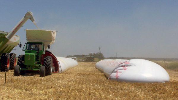 Silo garante conservação da produção agrícola e impede desperdício