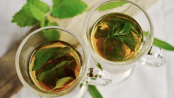 Salsa é erva versátil que pode ser utilizada de diversas formas