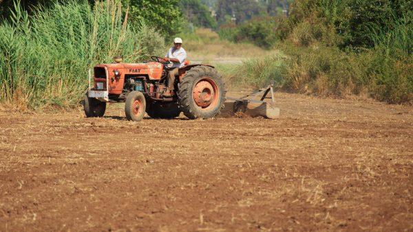 Cambissolo é solo de profundidade média utilizado na agricultura