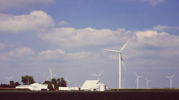 Energia eólica é obtida através da força dos ventos