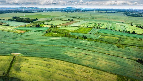 Matopiba é região agrícola que compreende quatro estados do Brasil