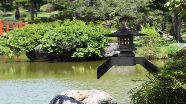 Paisagismo visa harmonia na relação entre as pessoas e a natureza