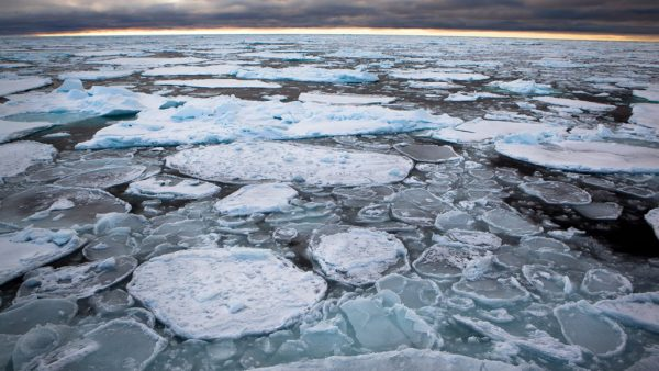 Aquecimento global produz consequências graves e merece atenção