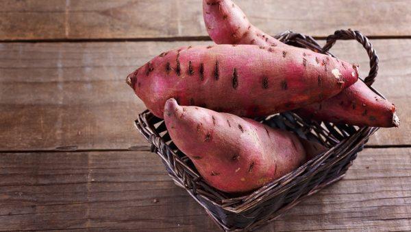Batata doce se originou nos Andes e hoje é um alimento super popular