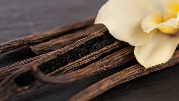 Baunilha é especiaria amada mundialmente e cada vez mais valorizada