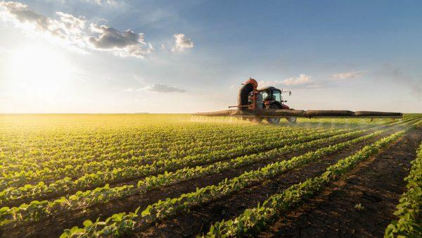Amaggi é trading brasileira focada no desenvolvimento do agronegócio