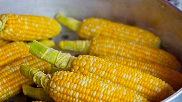Caramuru Alimentos: produção, industrialização e comércio de produtos