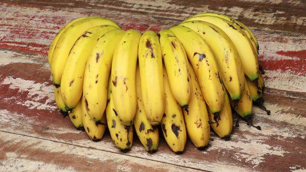 Banana nanica está entre as variedades mais cultivadas no Brasil