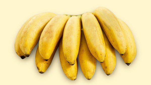 Banana ouro é uma das mais conhecidas variedades da fruta no país