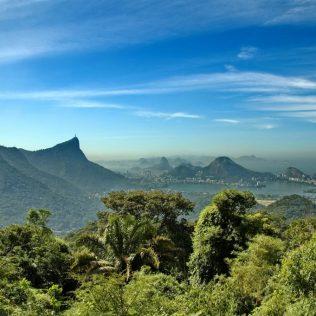 Mata Atlântica, floresta costeira, ocupa 10% da área do território nacional