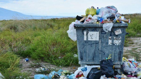 Minhocário é alternativa para evitar construção de aterros e lixões