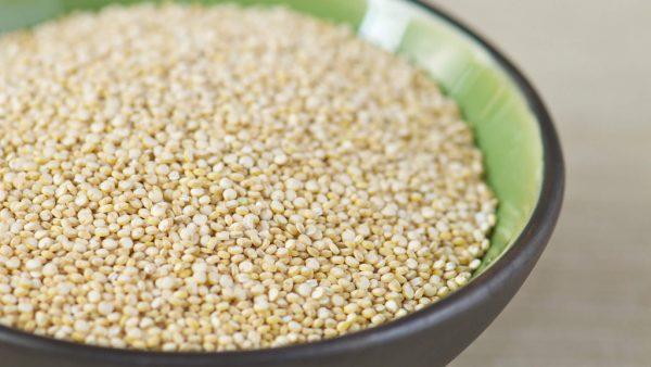 Quinoa tem mercado crescente e é uma boa opção de cultivo