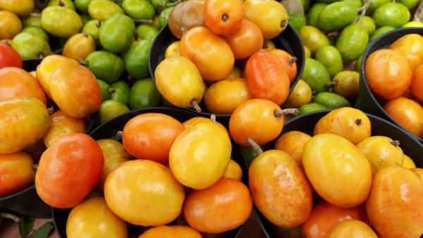 Cajá, frutinha amarelada e exótica, é encontrada em vários cantos do país