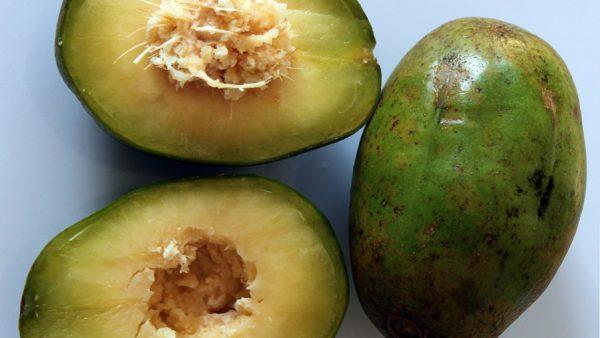 Cajá manga é fruta cultivada no Brasil caracterizada pelo sabor agridoce