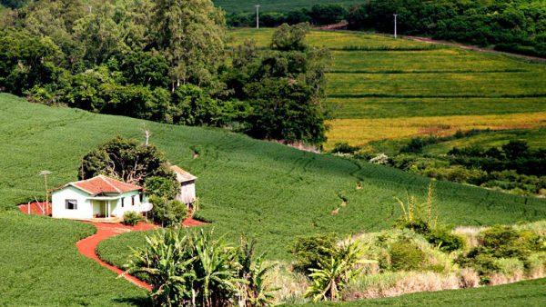 Cadastro ambiental rural gerencia informações dos imóveis rurais