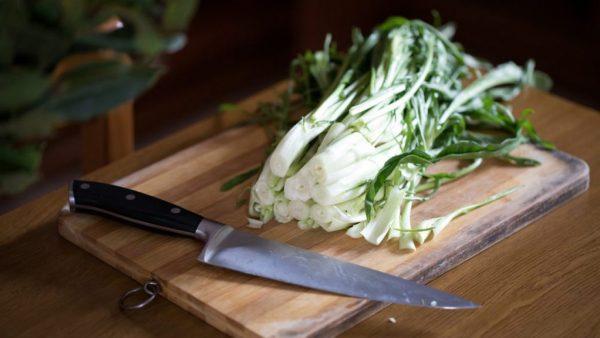 Catalonha é um vegetal da mesma família da escarola e da chicória