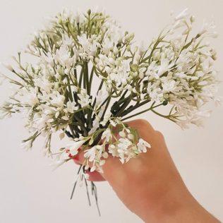 Flor mosquitinho, com nome curioso, é bastante usada em decorações