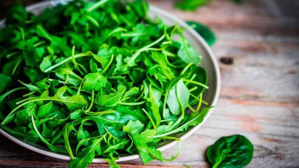 Rúcula é um vegetal que pertence à mesma família da mostarda