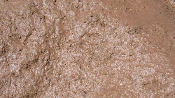 Lama (ou lodo) é uma mistura de terra, água e matérias orgânicas