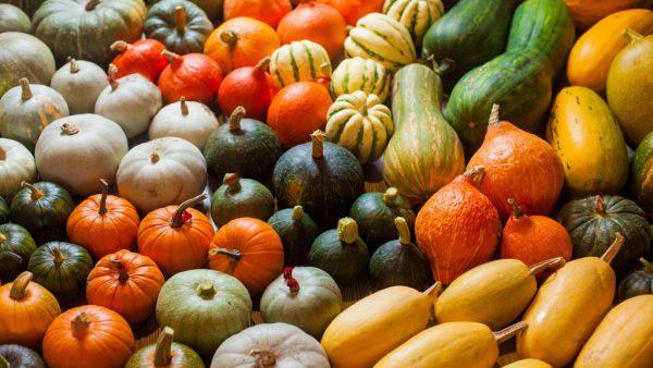 7 tipos de abóbora populares, nutritivos e cheios de benefícios