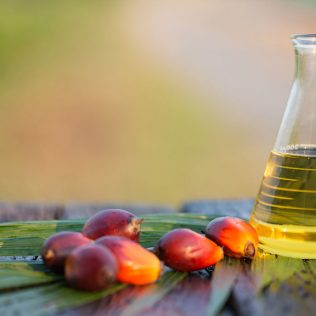 Azeite de dendê tem origem no fruto do dendezeiro