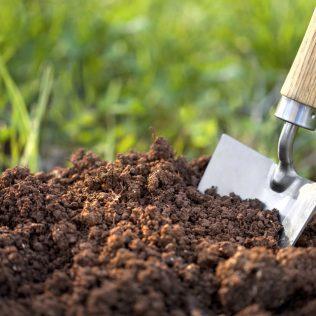 Porosidade do solo é fator de importância na agricultura