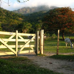 Porteira está presente na entrada de toda propriedade rural