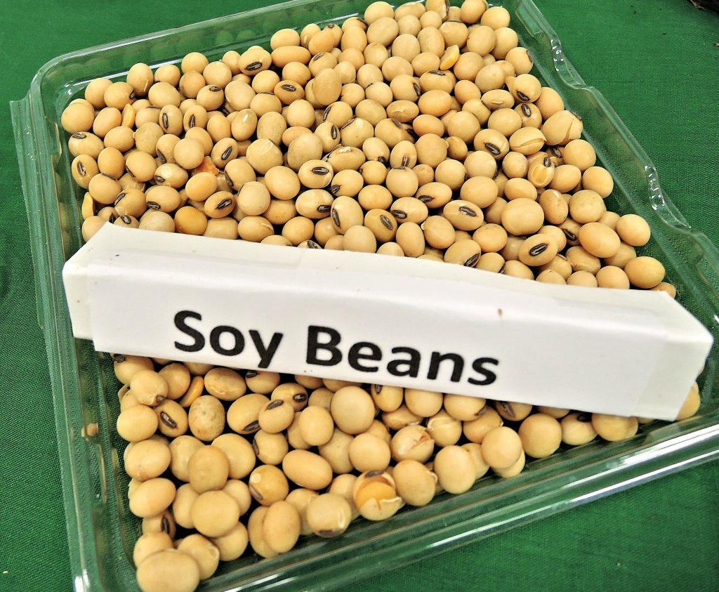 soja é uma das commodities da Abiove