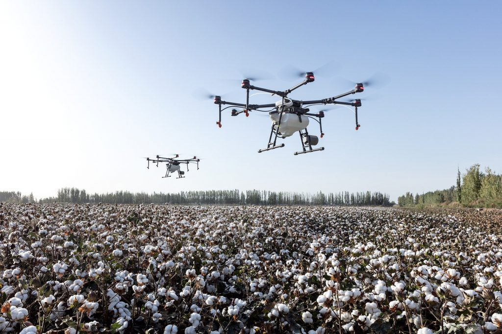 Grande produtora de algodão, Bahia Farm Show também destaca a produção de fibras no estado