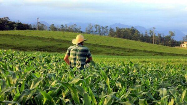 Conheça a Fecoagro (Federação das Cooperativas Agropecuárias do RS)
