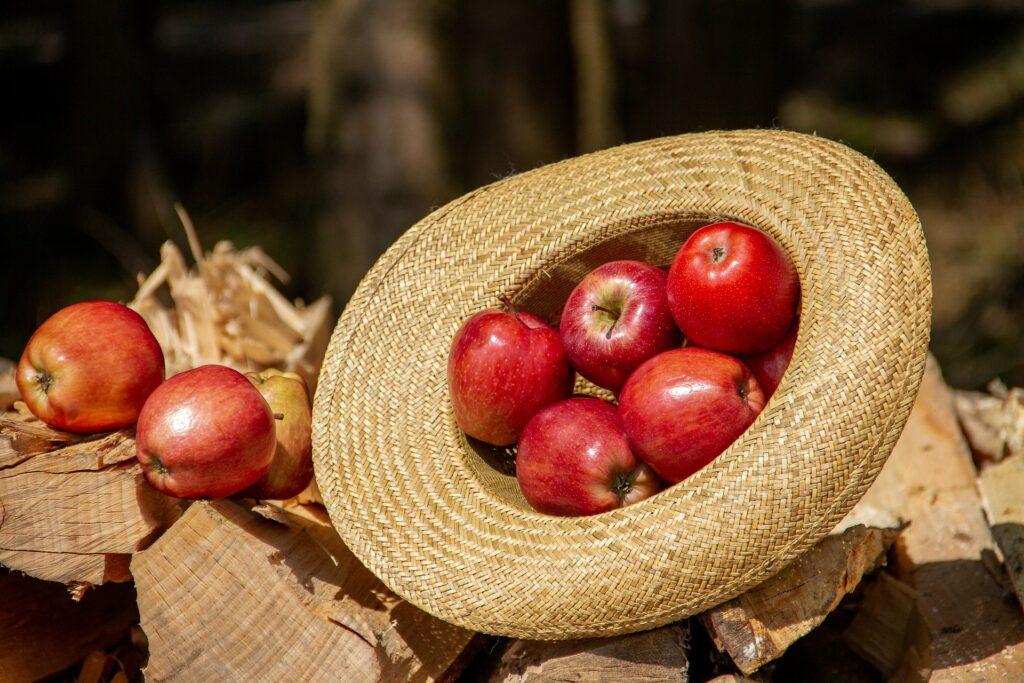 Femaçã é festa especial da maçã