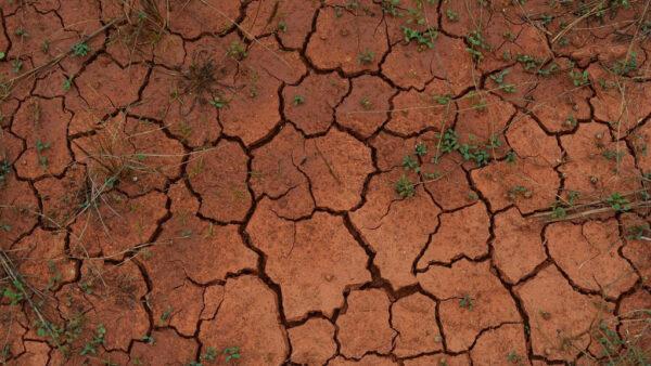 Solo argiloso é aquele que tem pelo menos 30% de argila na composição