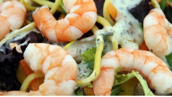 Criação de camarões de água doce é mais fácil que camarões marinhos